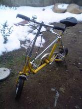 タミーの自転車