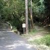 石上神宮の元宮!?パワーが~~! 奈良県の神社特集~♪の画像