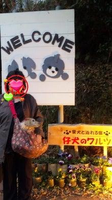 ももたん時々☆りえちゃん-Image001.jpg
