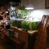 店内の水槽の画像