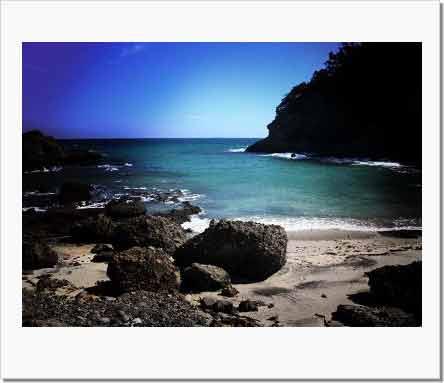 貝殻ひろったあの海岸