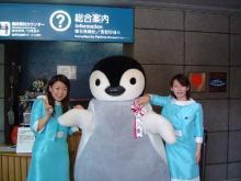 ペンギンガール