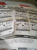 060807_1036~01.JPG