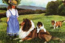 Collie_and_Girl