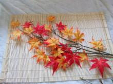 200円の秋用モデル