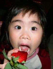 ルナとイチゴ