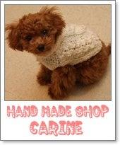 Carineのブログ-3