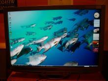 EIZO FlexScan HD2451W 5