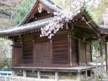 本長谷寺(モトハセデラ)