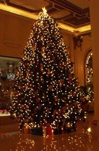 ペニンシュラクリスマスツリー
