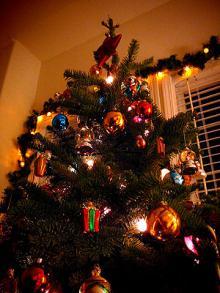 我家のツリー