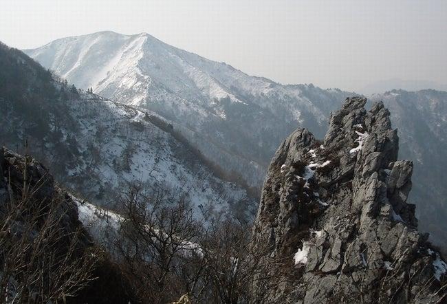 jirougyu1