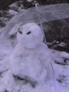 お手製雪だるまん♪