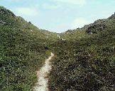 天上山・ハイキングコース