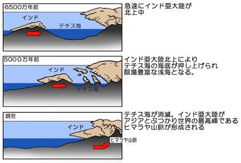 テチス海消滅と地殻変動