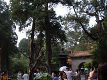 北京 故宮博物館5