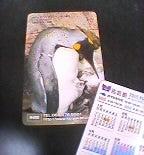 2005海遊館カレンダー