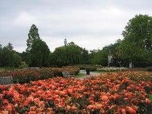 Regent's Park 3