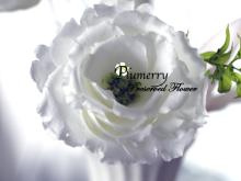 Plumerry(プルメリー)プリザーブドフラワースクール (千葉・浦安校)-メリア プリザーブドフラワー