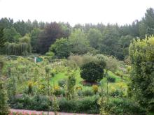 モネの家から庭園を眺める