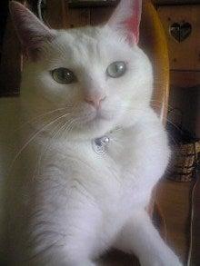 クゼリのブログ-Image1942.jpg