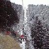 冬を楽しむの画像