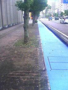 カラー化された自転車通行帯