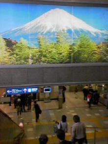 京都の富士