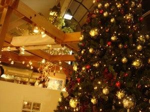 ギリギリのクリスマスツリー