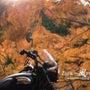 Bike Photo…