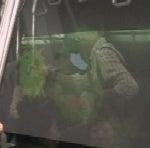 リニモ9番のまん中車両の左側映像7