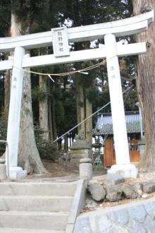 信州浅間山の麓・御代田町、八ヶ岳野辺山高原での小さな発見。