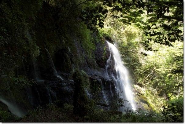うそぐいの滝2