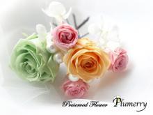 Plumerry(プルメリー)プリザーブドフラワースクール (千葉・浦安校)-春色 ヘッドパーツ